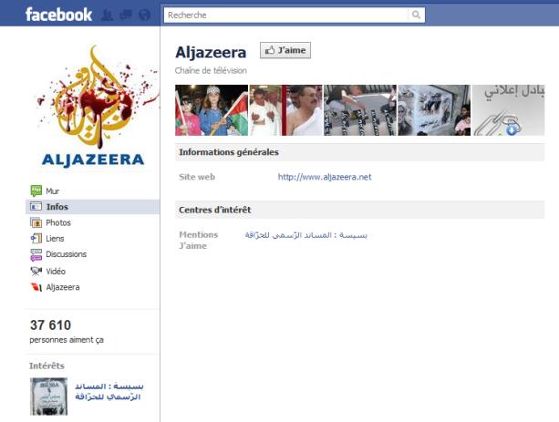 « Une capture d'écran d'une des faux pages créés par ces groupes pro régime algérien »