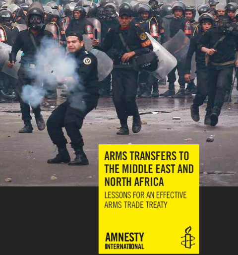 Rapport d'Amnesty International